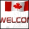 D T S M Driving Schools Inc - Special Purpose Courses & Schools - 613-828-3003