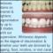Stapleton Susanne Dr - Dentists - 613-725-1560