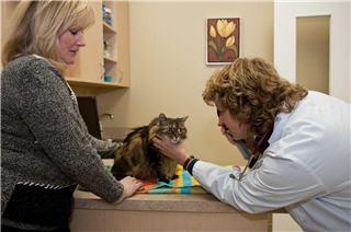 Westbridge Veterinary Hospital - Photo 6