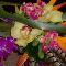 House Of Flowers - Florists & Flower Shops - 905-845-7573