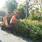 Quality Tree Service - Photo 8