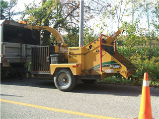Quality Tree Service - Photo 10