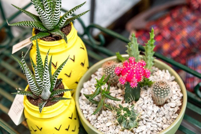 La belle fleur floral boutique ltd surrey bc 148 6350 for La belle fleur