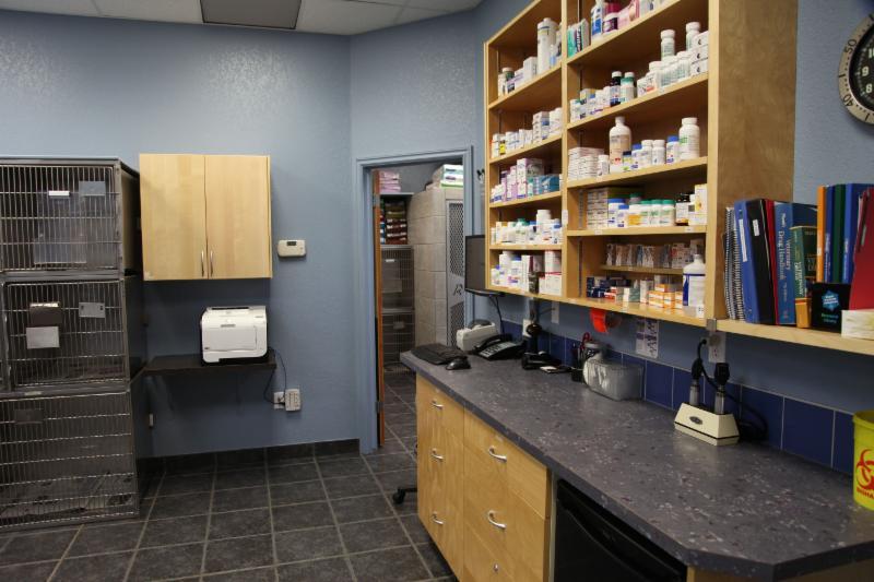 Dog & Cat Hospital - Photo 10