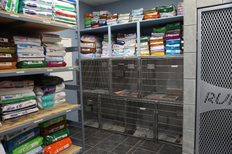 Dog & Cat Hospital - Photo 6