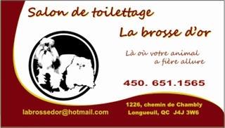 Salon De Toilettage La Brosse D'Or - Photo 1