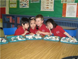 Vancouver Bilingual Preschool - Photo 5