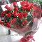 Hanamo Florist - Florists & Flower Shops - 604-685-3649