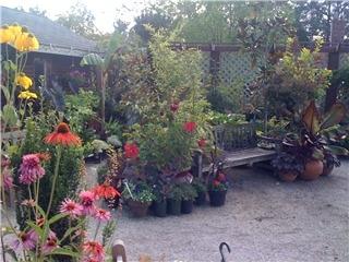 KJM Country Gardens - Photo 4