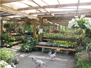 KJM Country Gardens - Photo 7