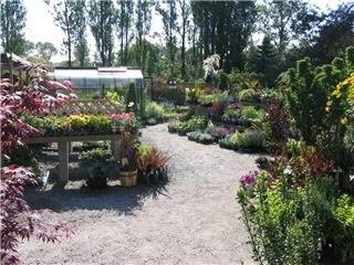 KJM Country Gardens - Photo 9