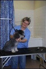 Glen Erin Animal Hospital - Photo 8