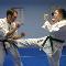 Classical Martial Arts Centre - Martial Arts Lessons & Schools - 905-849-7625