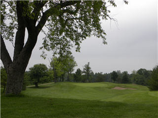 Springfield Golf & Country Club - Photo 9