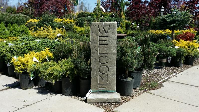 Lakeside Garden Gallery - Photo 6