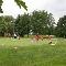 Club de Golf Rive-Sud Inc - Terrains de golf publics - 450-653-2471