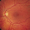 West Vancouver Optometry Clinic - Optometrists - 604-925-2525