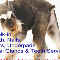 Pet Pet Wash Professional Dog Grooming Ltd - Pet Grooming, Clipping, & Washing - 780-483-8770