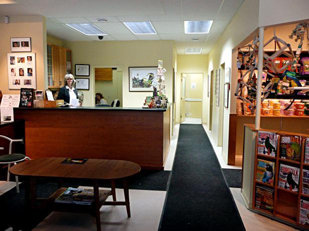 Hôpital Vétérinaire pour Oiseaux et Animaux Exotiques - Photo 9
