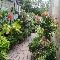 Centre De Jardin Del Esta - Photo 4