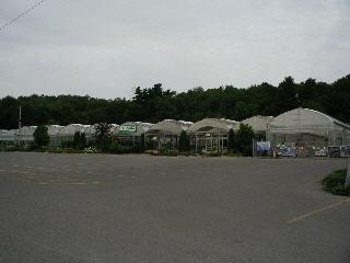 Pépinière Lapointe - Photo 2