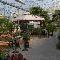 Pépinière Lapointe - Centres du jardin - 450-474-1680