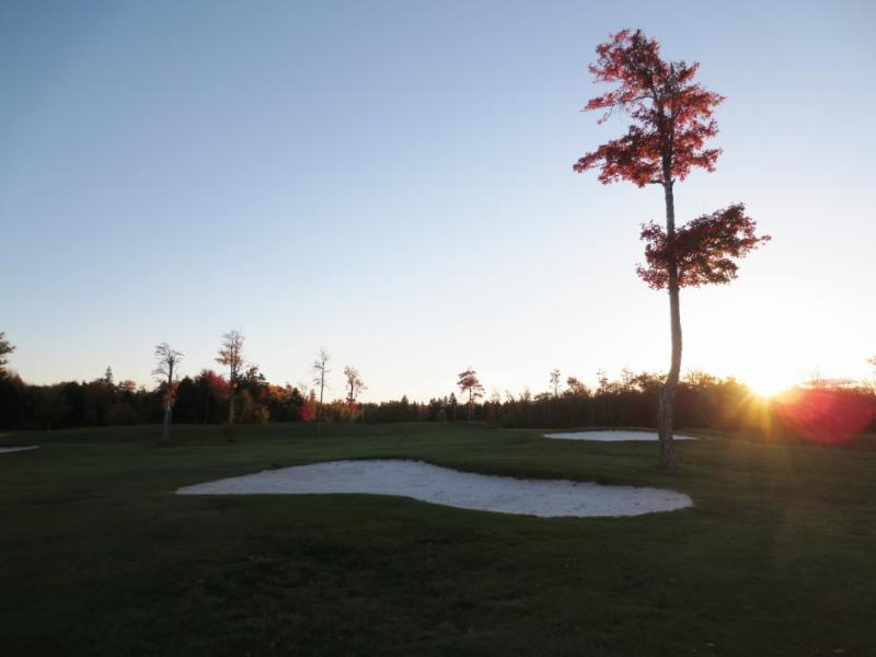Maplewood Golf & Country Club - Photo 8