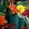 Fleuriste Roger (1986) Inc - Fleuristes et magasins de fleurs - 450-371-2555