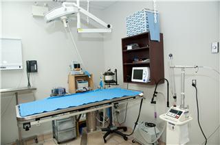 Hôpital Vétérinaire de la Seigneurie - Photo 7