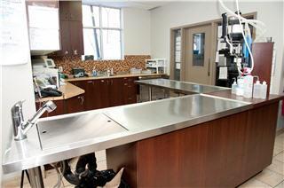 Hôpital Vétérinaire de la Seigneurie - Photo 2