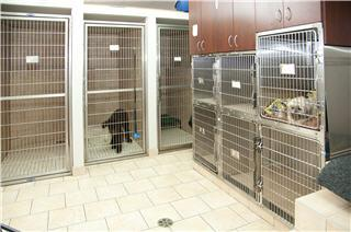 Hôpital Vétérinaire de la Seigneurie - Photo 9