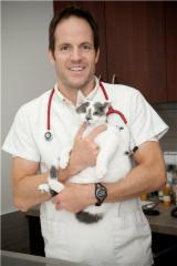 Hôpital Vétérinaire de la Seigneurie - Photo 5