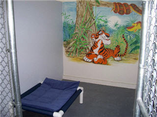 Glenpark Pet Hotel & Suites - Photo 3