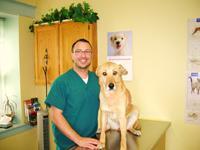 Arnold Crescent Veterinary Hospital - Photo 4