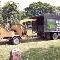 Abattage Dulac Services d'Arbres - Cordes à linge - 514-355-2232