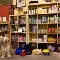 DOGSmart Training - Pet Food & Supply Stores - 604-267-9500