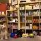 DOGSmart Training - Dog Training & Pet Obedience Schools - 604-267-9500