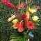 Fleurs 2 - Fleuristes et magasins de fleurs - 450-575-7317