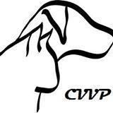 Clinique Vétérinaire Villeray-Papineau - Photo 5