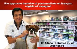 Clinique Vétérinaire Cimon - Photo 4