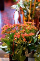 Fleuriste Dames D'Alcantara - Photo 8