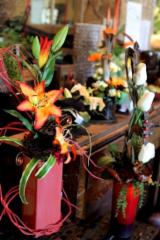 Fleuriste Dames D'Alcantara - Photo 6