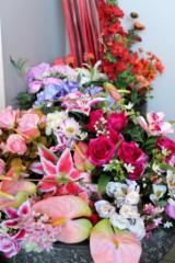 Fleuriste Dames D'Alcantara - Photo 9