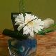 Fleurs-O-Max - Fleuristes et magasins de fleurs - 450-474-7171