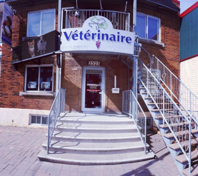 Clinique Vétérinaire Iberville - Photo 2