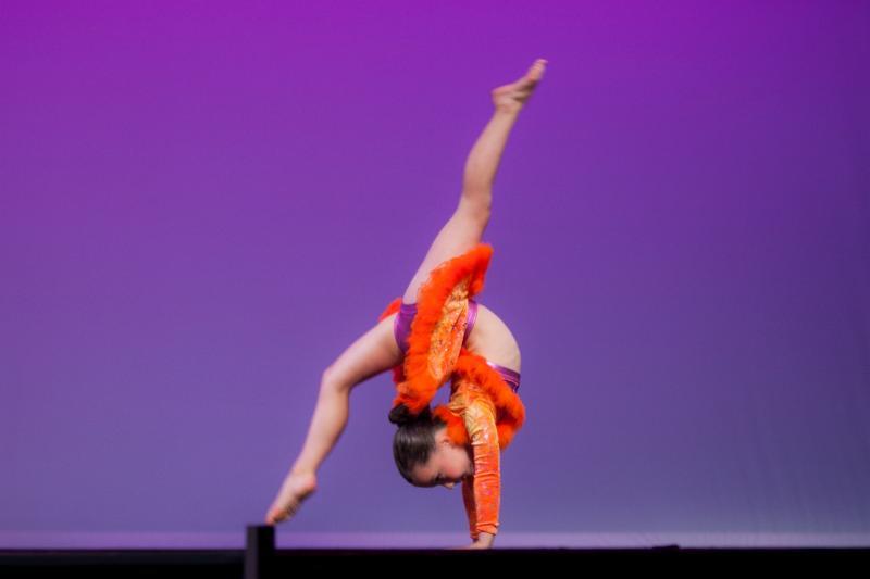 Element Dance Arts - Photo 9
