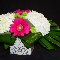 Fleuriste Alegria - Fleuristes et magasins de fleurs - 450-686-9543