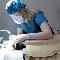 The Cat Clinic - Veterinarians - 905-387-4151