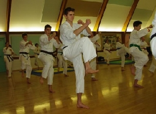 Western Karate Academy - Photo 3