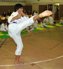 Western Karate Academy - Photo 9